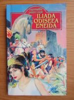 Anticariat: George Andreescu - Iliada. Odiseea. Eneida