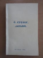Anticariat: George Cosbuc - Antologie (1936)