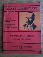 Anticariat: George Cosbuc - Cantece de vitejie (texte comentate)