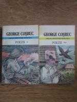 Anticariat: George Cosbuc - Poezii (2 volume)