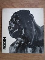Anticariat: George Popa - Rodin