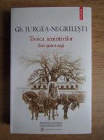Gh. Jurgea Negrilesti - Troica amintirilor. Sub patru regi