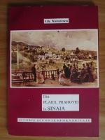 Gh. Nistorescu - Din plaiul Prahovei la Sinaia