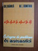 Gh. Tiganila - Culegere de probleme de matematici