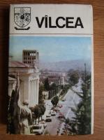 Anticariat: Gheorghe Cirstea - Valcea