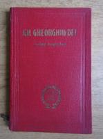 Anticariat: Gheorghe Gheorghiu Dej - Schita biografica