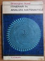 Gheorghe Gussi - Itinerar in analiza matematica