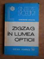 Anticariat: Gheorghe Hutanu - Zigzag in lumea opticii