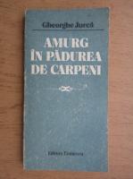 Gheorghe Jurca - Amurg in padurea de carpeni