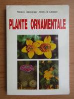 Anticariat: Gheorghe Mohan - Plante ornamentale