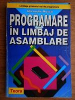 Gheorghe Musca - Programare in limbaj de asamblare