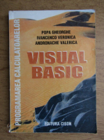 Gheorghe Popa - Visual basic