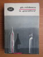 Anticariat: Gib I. Mihaescu - La grandiflora