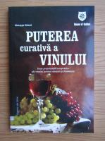 Anticariat: Giuseppe Sicheri - Puterea curativa a vinului