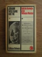 Anticariat: Goethe - Anii de drumetie ai lui Wilhelm Meister