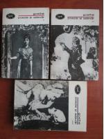 Goethe - Poezie si adevar (3 volume)