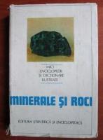 Gogu Parvu - Minerale si roci