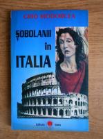 Grid Modorcea - Sobolanii in Italia