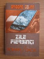 Grigore Cojan - Zile fierbinti