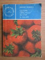 Grigore Mihaescu - Cultura capsunului in camp si solarii