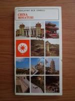 Haralambie Bica Ionescu - China. Miniaturi