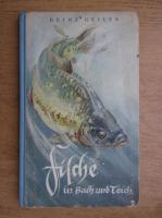 Heinz Geiler - Fische in Bach und Teich