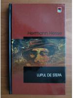Hermann Hesse - Lupul de stepa (cartonata, ed. Rao)