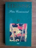 Anticariat: Hermann Hesse - Peter Camenzind