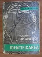 Horia Tecuceanu - Capitanul Apostolescu si identificarea