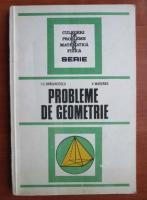 I. C. Draghicescu - Probleme de geometrie