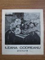Anticariat: Ileana Codreanu, pictura (catalog de expozitie)