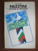 Ilie Puia - Palestina, istorie si prezent