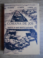 Ioan Glodariu - Comana de Jos. Asezarile de epoca dacica si prefeudala