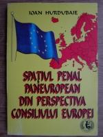 Anticariat: Ioan Hurdubaie - Spatiul penal paneuropean din perspectiva Consiliului Europei