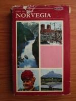 Anticariat: Ioan Meitoiu - Norvegia