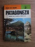 Anticariat: Ioan St. Radu - Patagonezii. Oamenii de la capatul pamantului