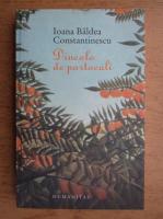 Ioana Baldea Constantinescu - Dincolo de portocale