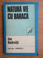 Ion Andreita - Natura vie cu baraca