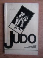 Anticariat: Ion Avram - Judo