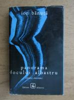 Anticariat: Ion Banuta - Panorama focului albastru
