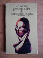 Ion Banuta - Panorama-n dor de domnisoara Pogany