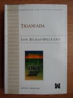 Ion Budai Deleanu - Tiganiada
