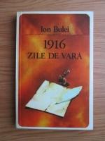 Anticariat: Ion Bulei - 1916 zile de vara