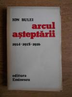 Ion Bulei - Arcul asteptarii
