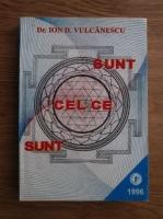 Ion D. Vulcanescu - Sunt cel ce sunt