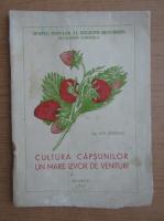 Anticariat: Ion Diaconu - Cultura capsunilor. Un mare izvor de venituri