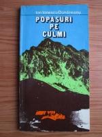 Ion Ionescu-Dunareanu - Popasuri pe culmi
