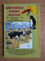 Ion Iordache - Uimitoarele pasari exotice