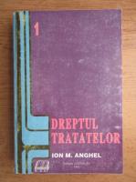 Anticariat: Ion M. Anghel - Dreptul tratatelor (volumul 1)