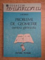Ion Petrica - Probleme de geometrie pentru gimnaziu